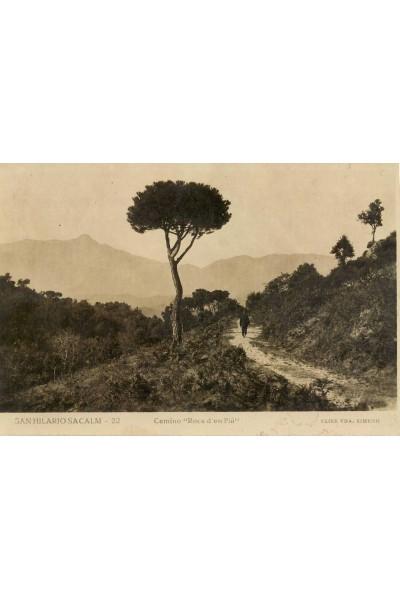 Camí Roca d'en Pla, Sant Hilari Sacalm